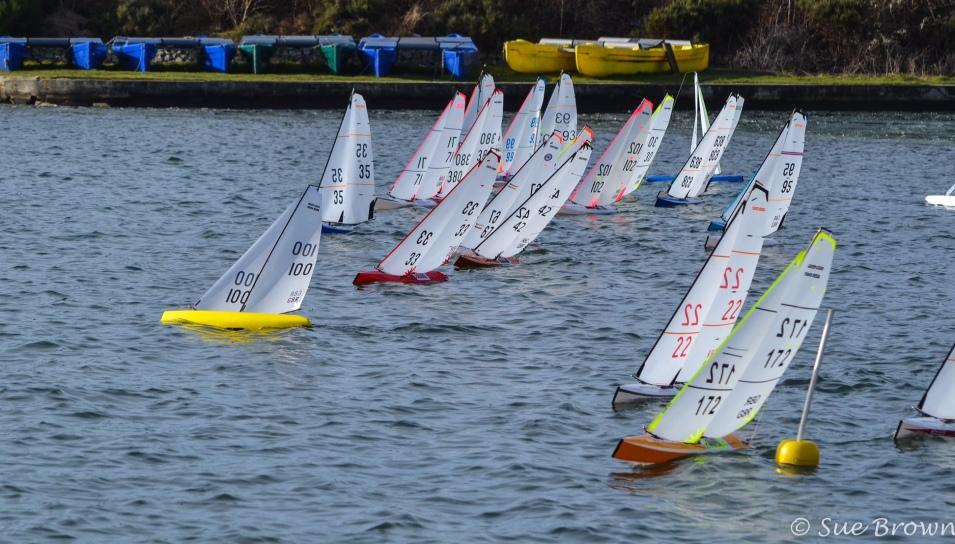 Image result for west lancs df sailing